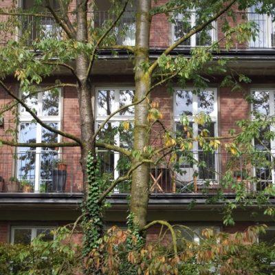 Henriettenviertel_1_meinhof-felsmann